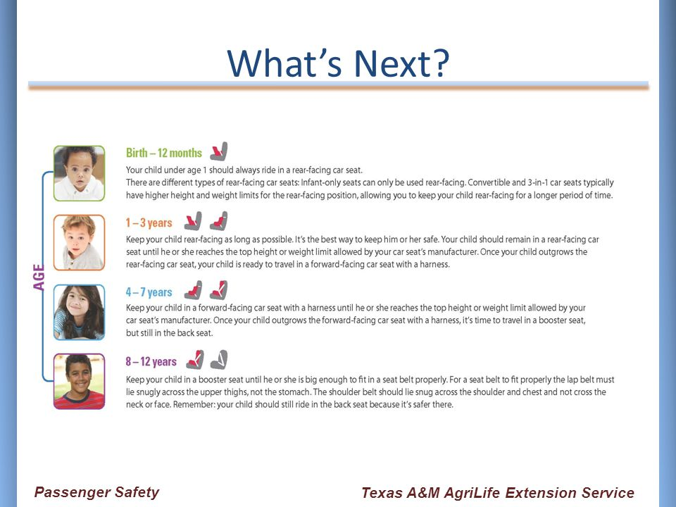 What's Next? Passenger Safety Texas A&M AgriLife Extension Service