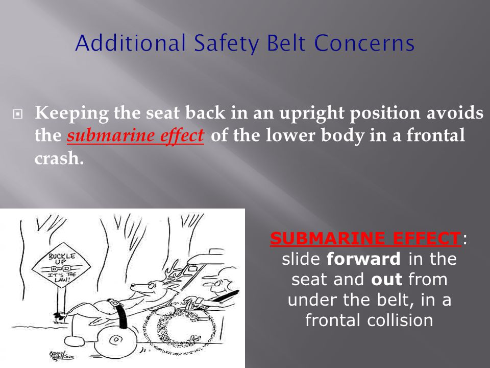 Additional Safety Belt Concerns  Keeping the seat back in an upright position avoids the submarine effect of the lower body in a frontal crash.