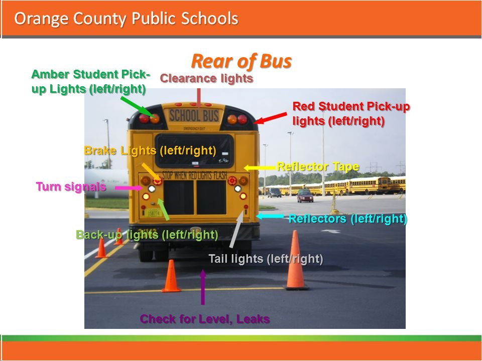 Rear of Bus Check for Level, Leaks Clearance lights Red Student Pick-up lights (left/right) Turn signals Amber Student Pick- up Lights (left/right) Reflectors (left/right) Reflector Tape Brake Lights (left/right) Back-up lights (left/right) Tail lights (left/right)
