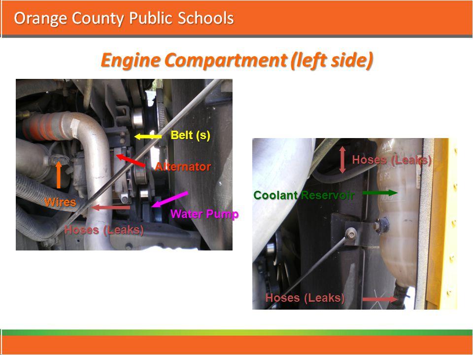 Engine Compartment (left side) Hoses (Leaks) Alternator Water Pump Belt (s) Coolant Reservoir Hoses (Leaks) Wires