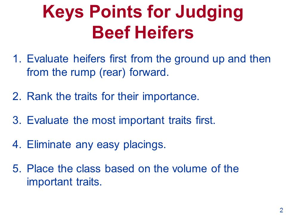 2 Keys Points for Judging Beef Heifers 1.Evaluate heifers first from the ground up and then from the rump (rear) forward. 2.Rank the traits for their
