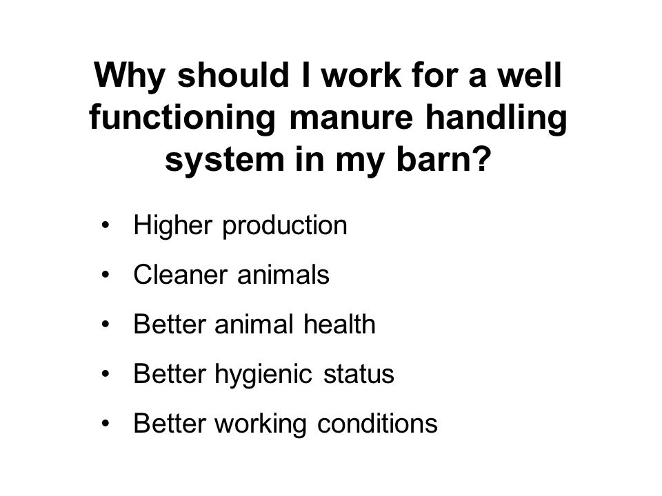 Why should I work for a well functioning manure handling system in my barn? Higher production Cleaner animals Better animal health Better hygienic sta
