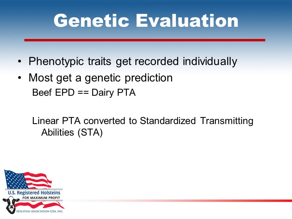 Genetic Evaluation Phenotypic traits get recorded individually Most get a genetic prediction Beef EPD == Dairy PTA Linear PTA converted to Standardized Transmitting Abilities (STA)