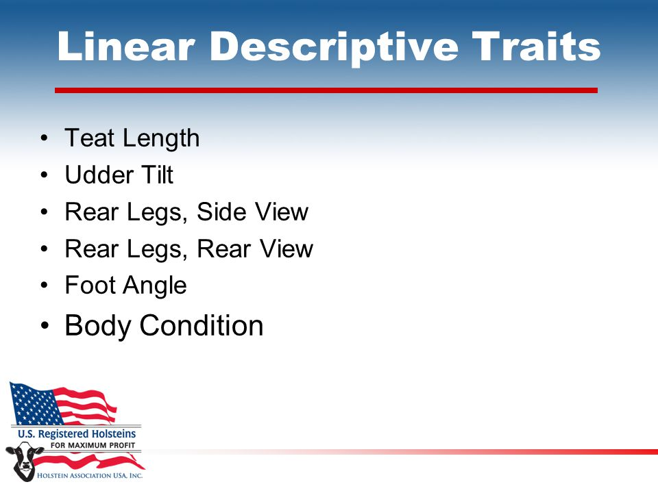 Linear Descriptive Traits Teat Length Udder Tilt Rear Legs, Side View Rear Legs, Rear View Foot Angle Body Condition