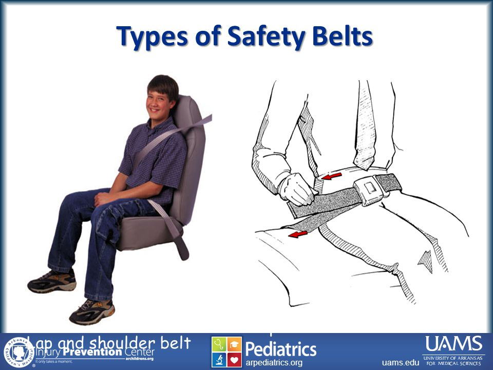 archildrens.org uams.edu arpediatrics.org uams.edu arpediatrics.org Types of Safety Belts Lap and shoulder belt Lap belt
