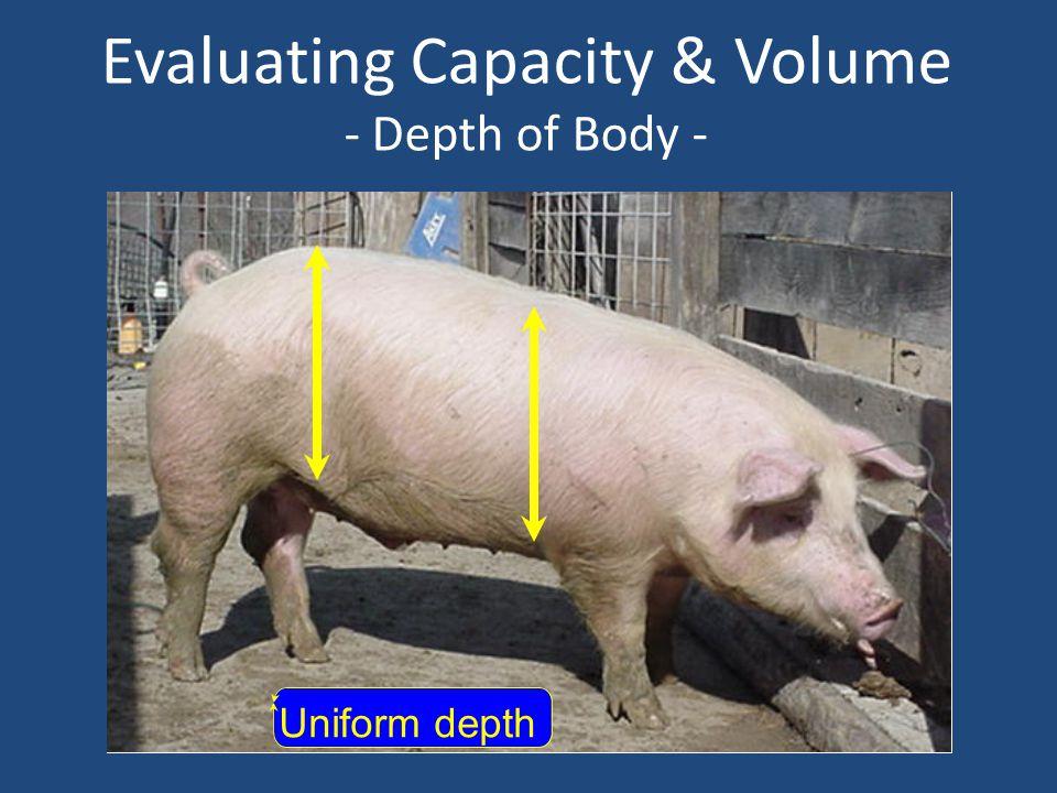 Evaluating Capacity & Volume - Depth of Body - Uniform depth