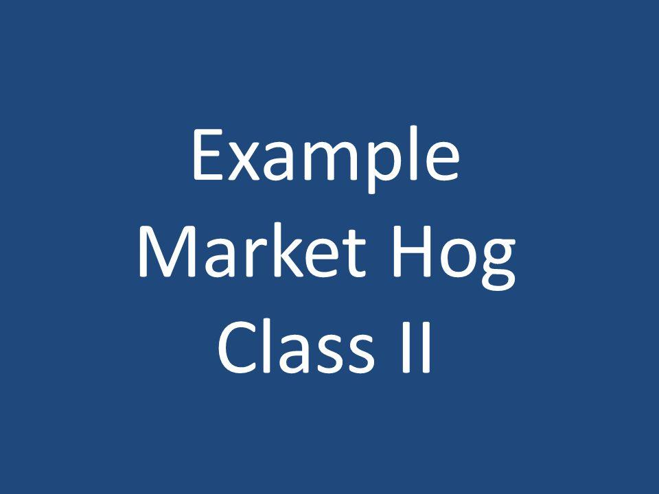 Example Market Hog Class II
