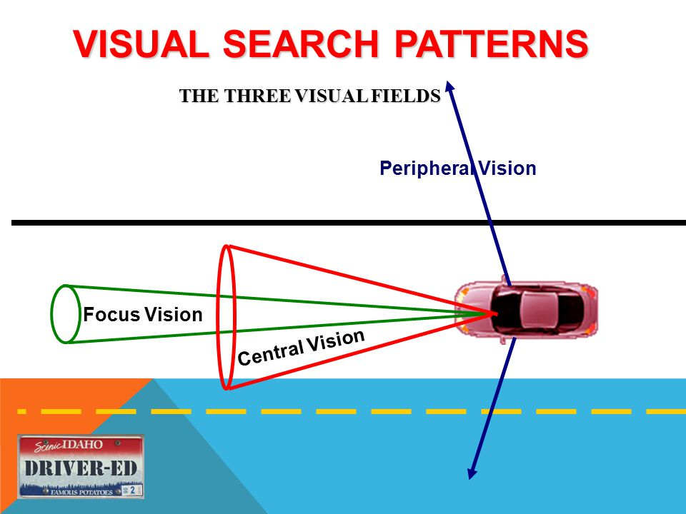 VISUAL SEARCH PATTERNS Peripheral Vision Central Vision Focus Vision THE THREE VISUAL FIELDS