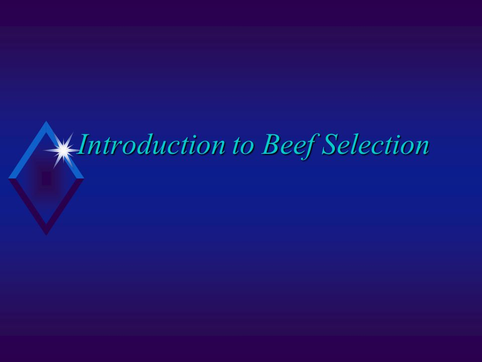 Introduction to Beef Selection