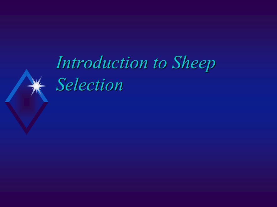 Introduction to Sheep Selection