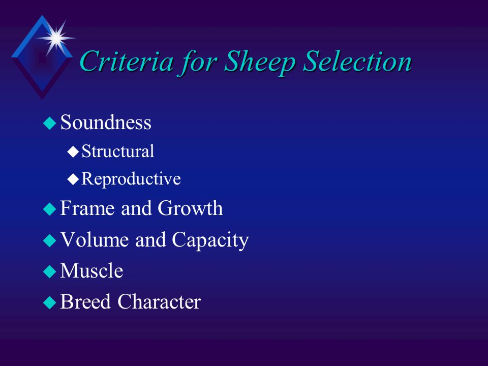 Criteria for Sheep Selection u Soundness u Structural u Reproductive u Frame and Growth u Volume and Capacity u Muscle u Breed Character
