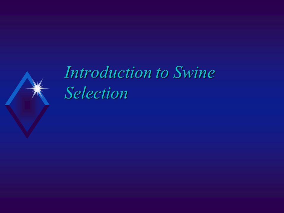 Introduction to Swine Selection
