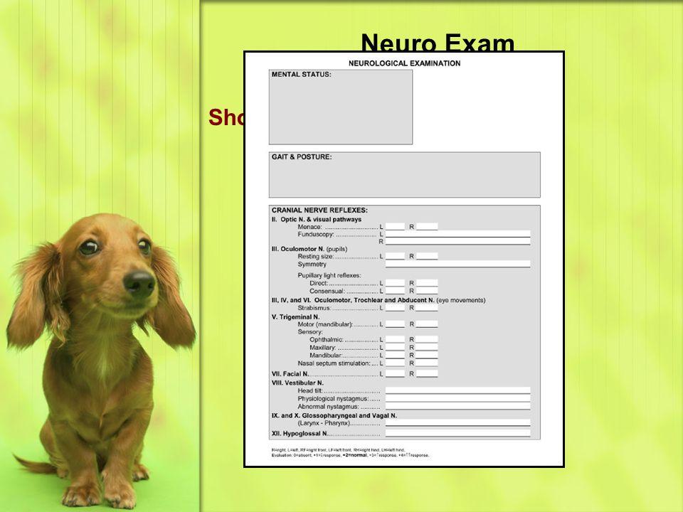 Short neuro form