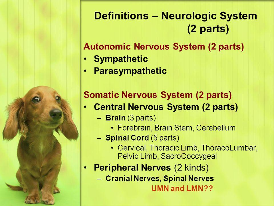 Definitions – Neurologic System (2 parts) Autonomic Nervous System (2 parts) Sympathetic Parasympathetic Somatic Nervous System (2 parts) Central Nervous System (2 parts) –Brain (3 parts) Forebrain, Brain Stem, Cerebellum –Spinal Cord (5 parts) Cervical, Thoracic Limb, ThoracoLumbar, Pelvic Limb, SacroCoccygeal Peripheral Nerves (2 kinds) –Cranial Nerves, Spinal Nerves UMN and LMN??