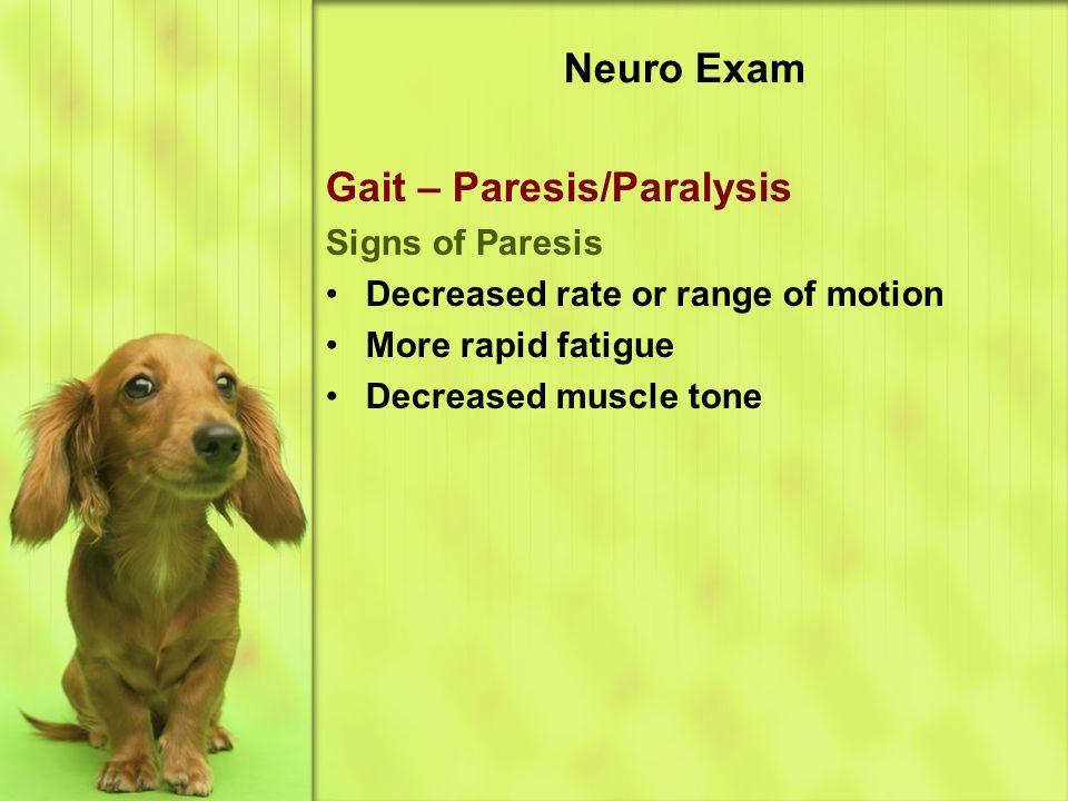 Neuro Exam Gait – Paresis/Paralysis Signs of Paresis Decreased rate or range of motion More rapid fatigue Decreased muscle tone