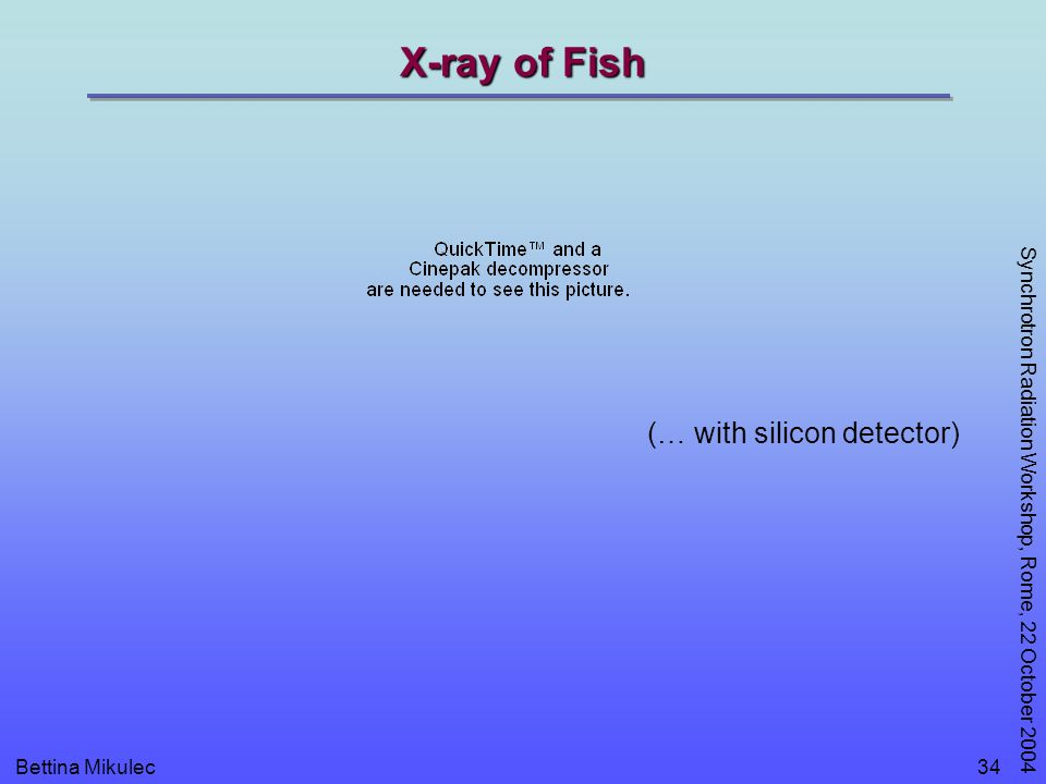 Bettina Mikulec Synchrotron Radiation Workshop, Rome, 22 October 2004 34 X-ray of Fish (… with silicon detector)