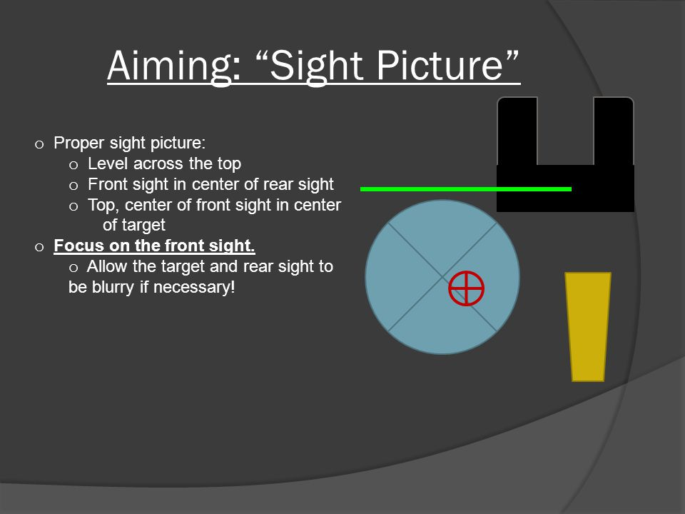 Aiming: Sight Picture o Proper sight picture: o Level across the top o Front sight in center of rear sight o Top, center of front sight in center of target o Focus on the front sight.