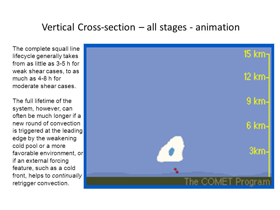 Vertical Cross-section – all stages - animation The complete squall line lifecycle generally takes from as little as 3-5 h for weak shear cases, to as