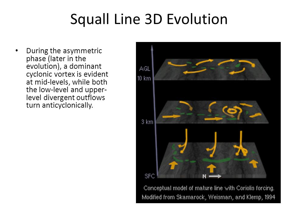 Squall Line 3D Evolution During the asymmetric phase (later in the evolution), a dominant cyclonic vortex is evident at mid-levels, while both the low