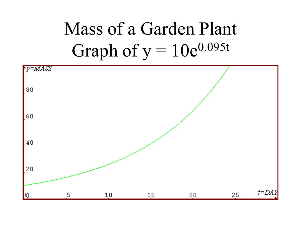 Mass of a Garden Plant Graph of y = 10e 0.095t
