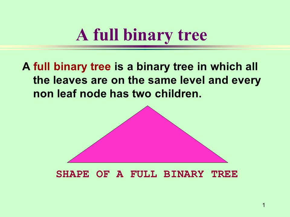 1 A full binary tree A full binary tree is a binary tree in which all the leaves are on the same level and every non leaf node has two children.