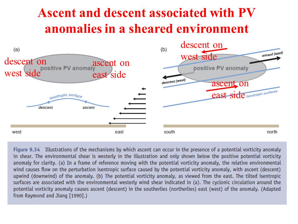 Ascent and descent associated with PV anomalies in a sheared environment ascent on east side descent on west side ascent on east side descent on west side