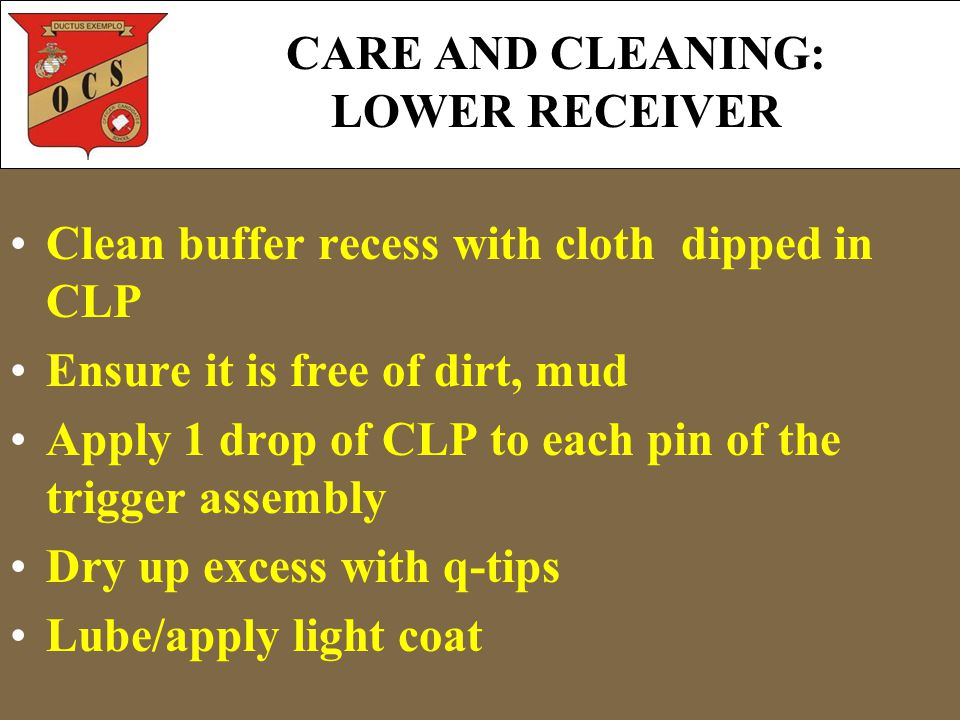 CARE AND CLEANING: LOWER RECEIVER Clean buffer recess with cloth dipped in CLP Ensure it is free of dirt, mud Apply 1 drop of CLP to each pin of the t