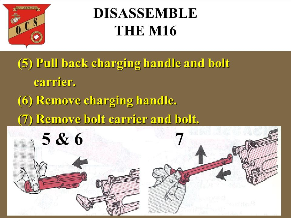 (5) Pull back charging handle and bolt carrier. carrier. (6) Remove charging handle. (7) Remove bolt carrier and bolt. 5 & 6 7 DISASSEMBLE THE M16