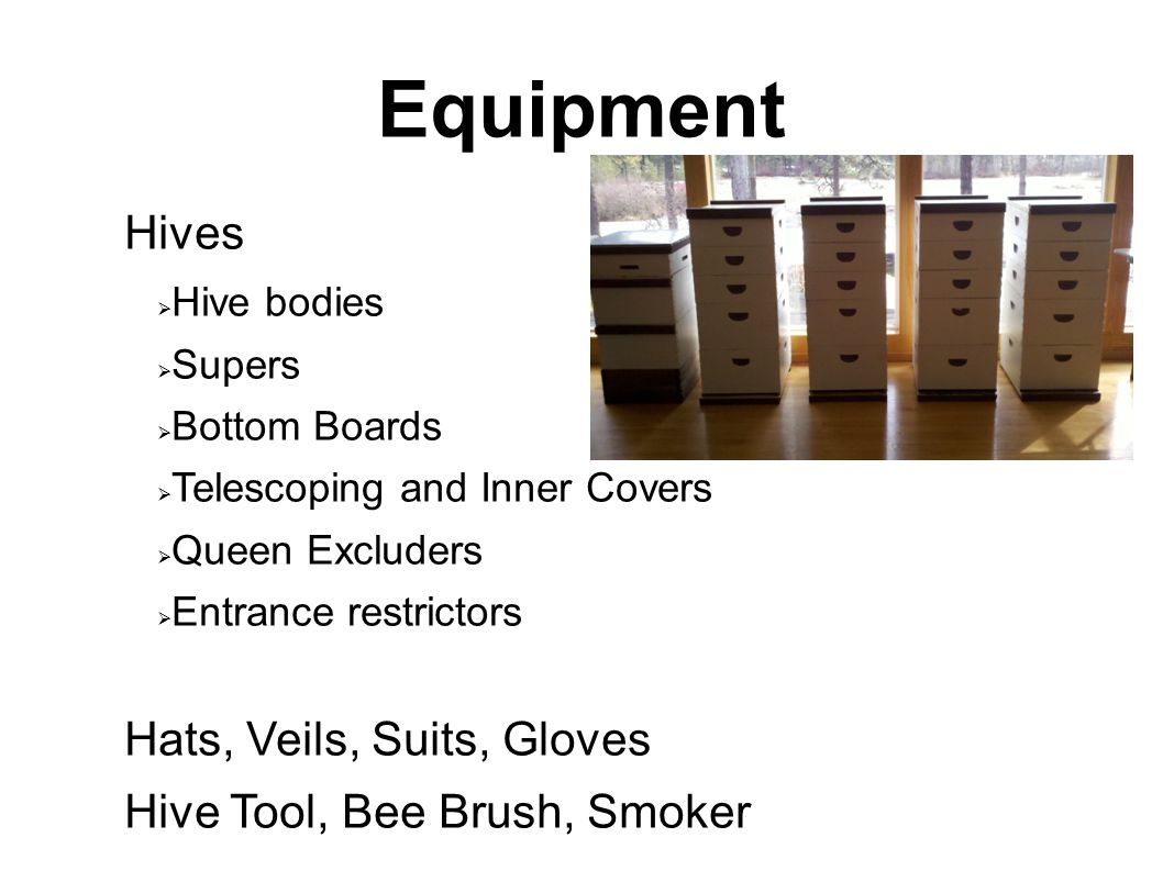 Equipment Hives  Hive bodies  Supers  Bottom Boards  Telescoping and Inner Covers  Queen Excluders  Entrance restrictors Hats, Veils, Suits, Glo