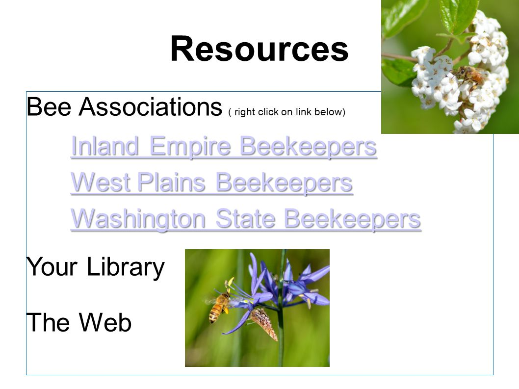 Resources Bee Associations ( right click on link below) Inland Empire Beekeepers Inland Empire Beekeepers West Plains Beekeepers West Plains Beekeeper