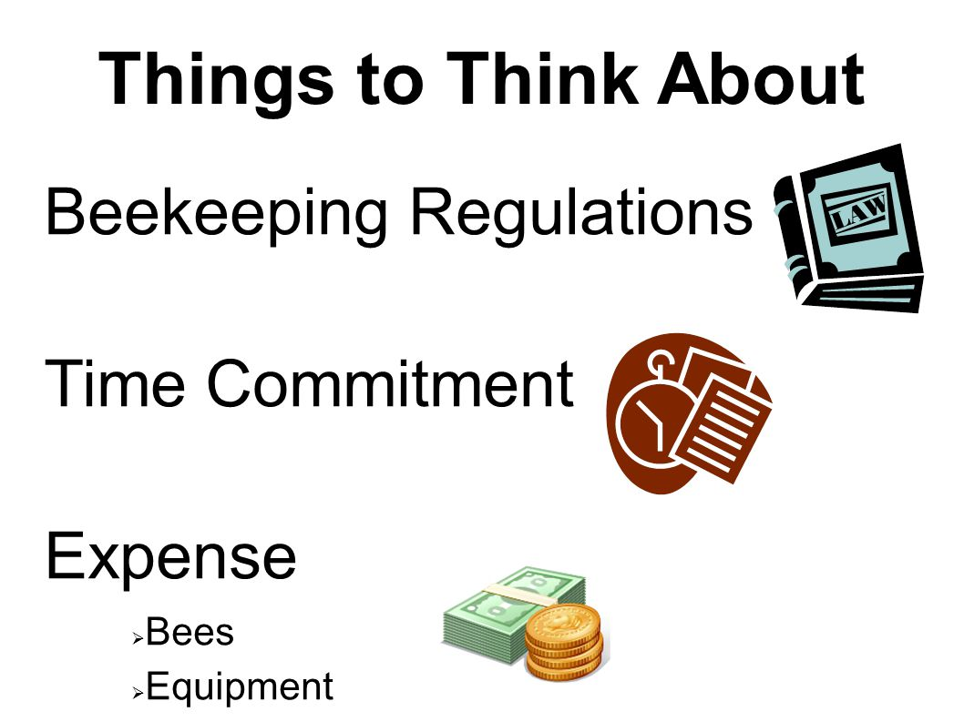 Things to Think About Beekeeping Regulations Time Commitment Expense  Bees  Equipment