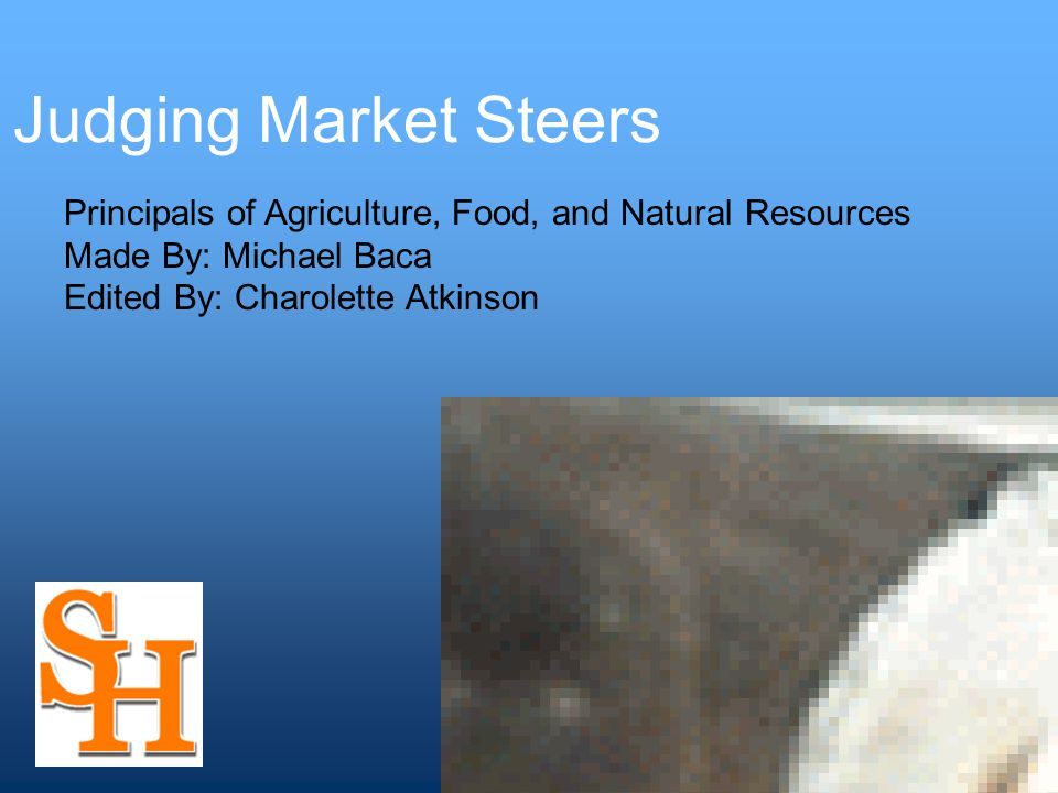 Judging Market Steers Principals of Agriculture, Food, and Natural Resources Made By: Michael Baca Edited By: Charolette Atkinson