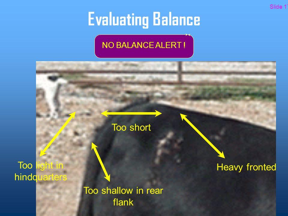 Evaluating Balance NO BALANCE ALERT .