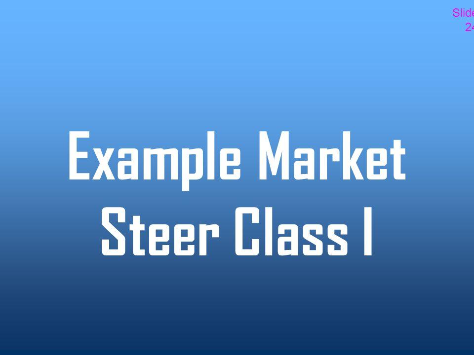 Example Market Steer Class I Slide 24