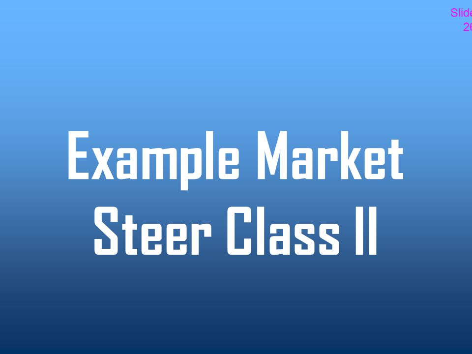 Example Market Steer Class II Slide 26