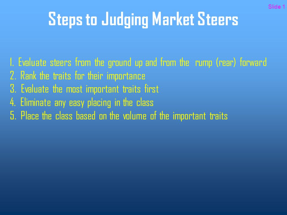 Ranking of Traits for Market Steers 1.Degree of muscling 2.