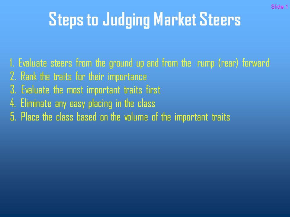 Steps to Judging Market Steers 1.