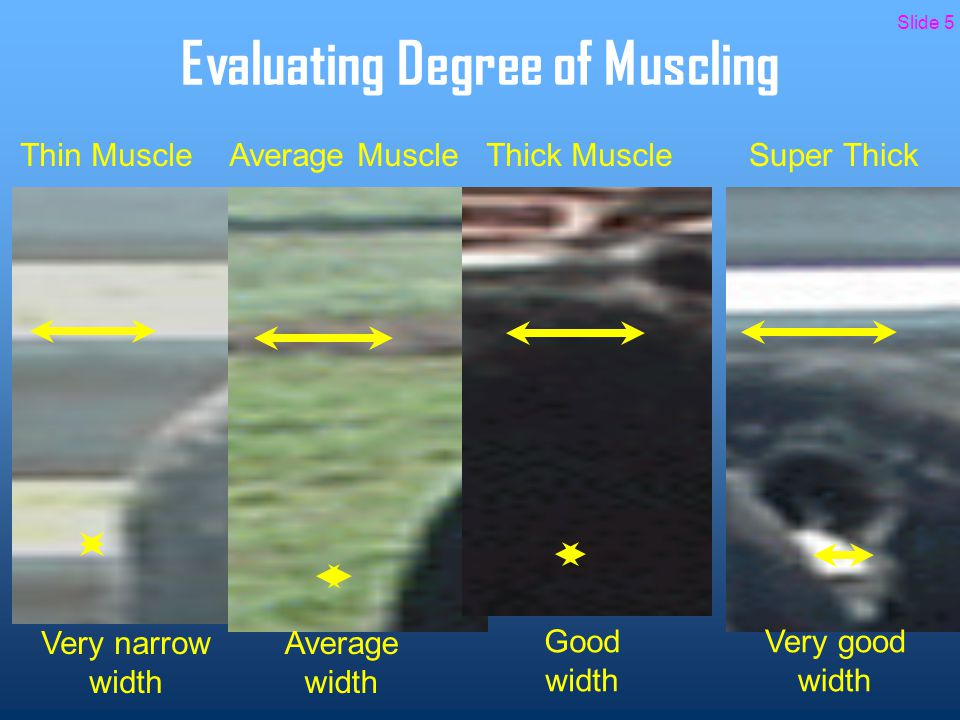 Evaluating Degree of Finish Areas to consider when evaluating degree of finish include: 1.