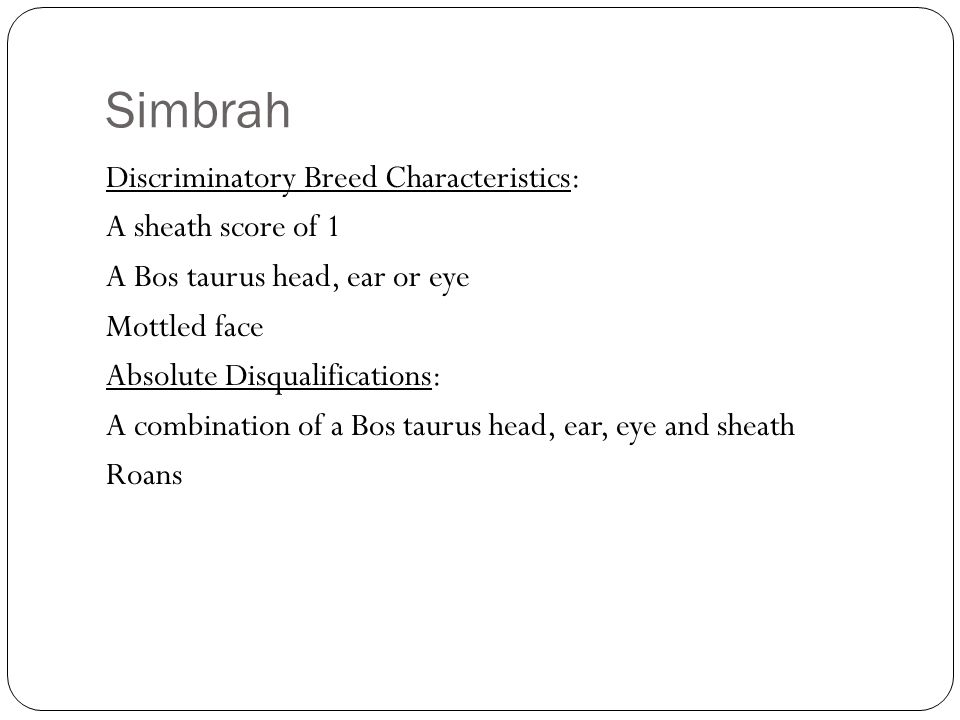 Simbrah Discriminatory Breed Characteristics: A sheath score of 1 A Bos taurus head, ear or eye Mottled face Absolute Disqualifications: A combination of a Bos taurus head, ear, eye and sheath Roans