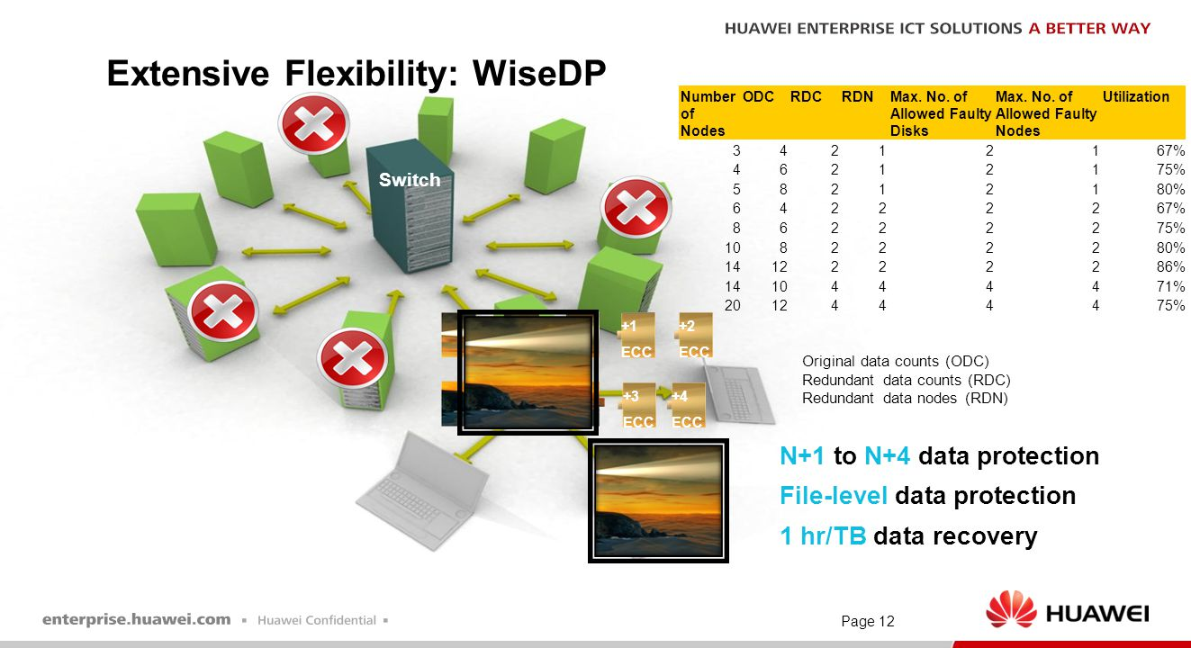 Page 12 Switch Extensive Flexibility: WiseDP N+1 to N+4 data protection File-level data protection 1 hr/TB data recovery +1 ECC +3 ECC +2 ECC +4 ECC N