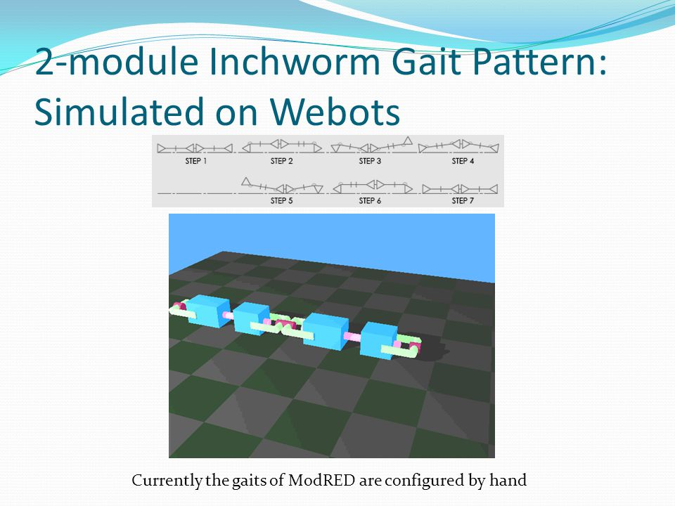 2-module Inchworm Gait Pattern: Simulated on Webots Currently the gaits of ModRED are configured by hand