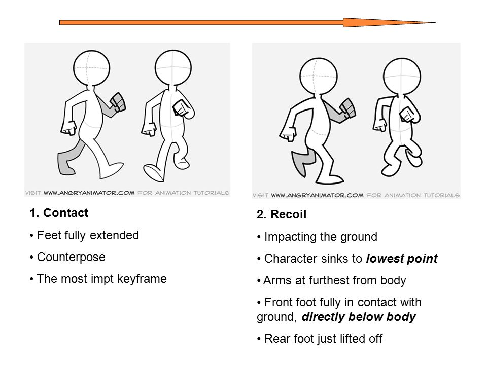 1.Contact Feet fully extended Counterpose The most impt keyframe 2.