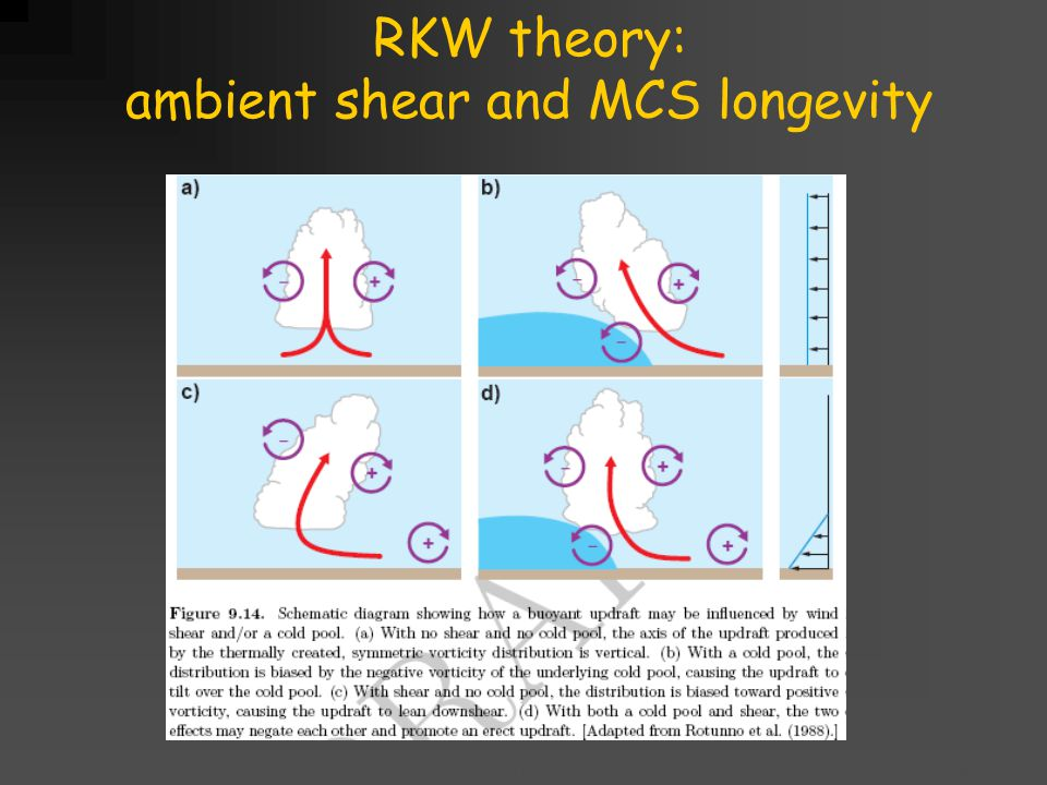 Title goes here for lessonFebruary 2002 RKW theory: ambient shear and MCS longevity