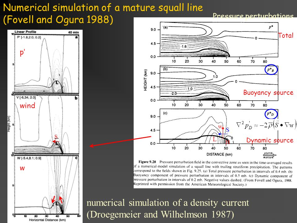 Title goes here for lessonFebruary 2002 Numerical simulation of a mature squall line (Fovell and Ogura 1988) L H S Pressure perturbations Total Buoyancy source Dynamic source numerical simulation of a density current (Droegemeier and Wilhelmson 1987) p' wind w S w