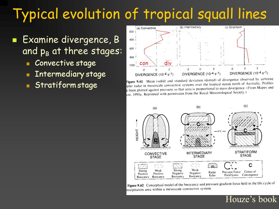 Title goes here for lessonFebruary 2002 Typical evolution of tropical squall lines Examine divergence, B and p B at three stages: Convective stage Intermediary stage Stratiform stage Houze's book con div