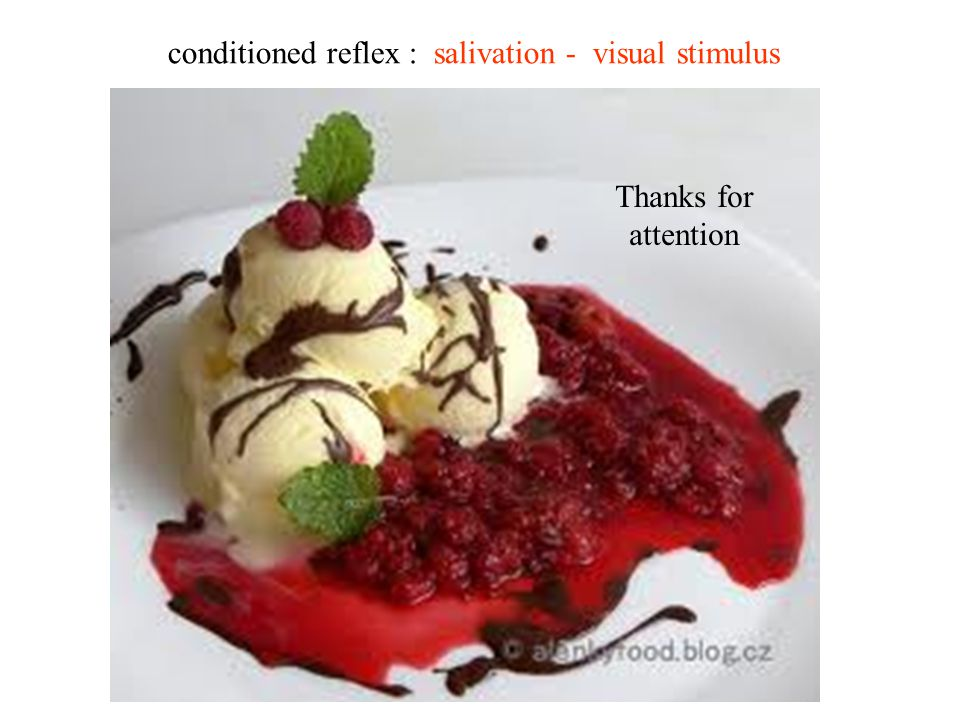 conditioned reflex : salivation - visual stimulus Thanks for attention