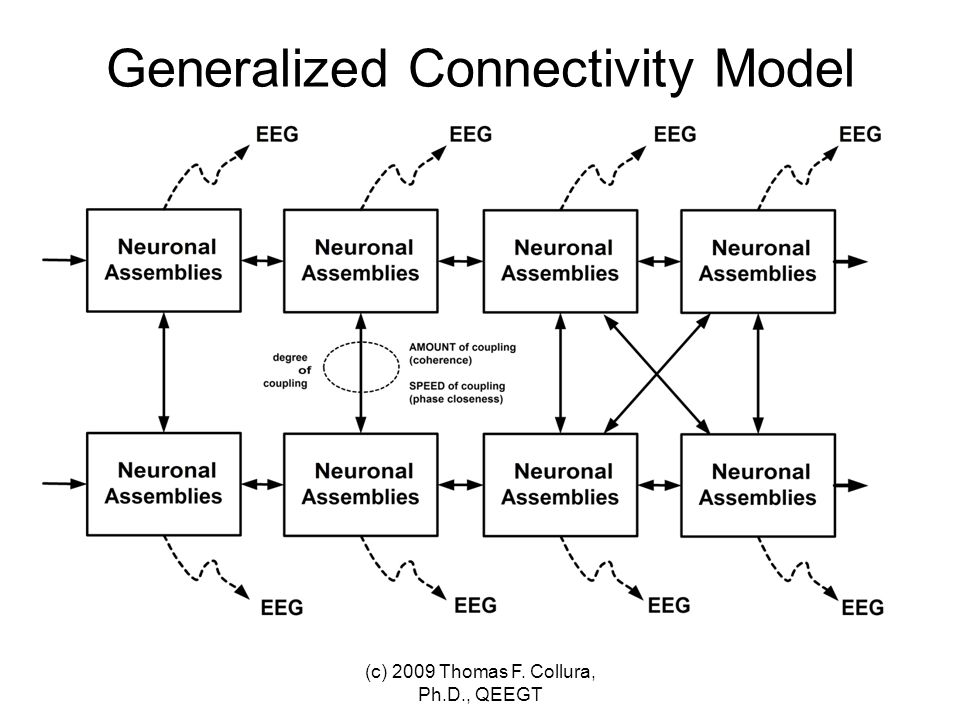 System Identification and Parameter Estimation (c) 2009 Thomas F. Collura, Ph.D., QEEGT
