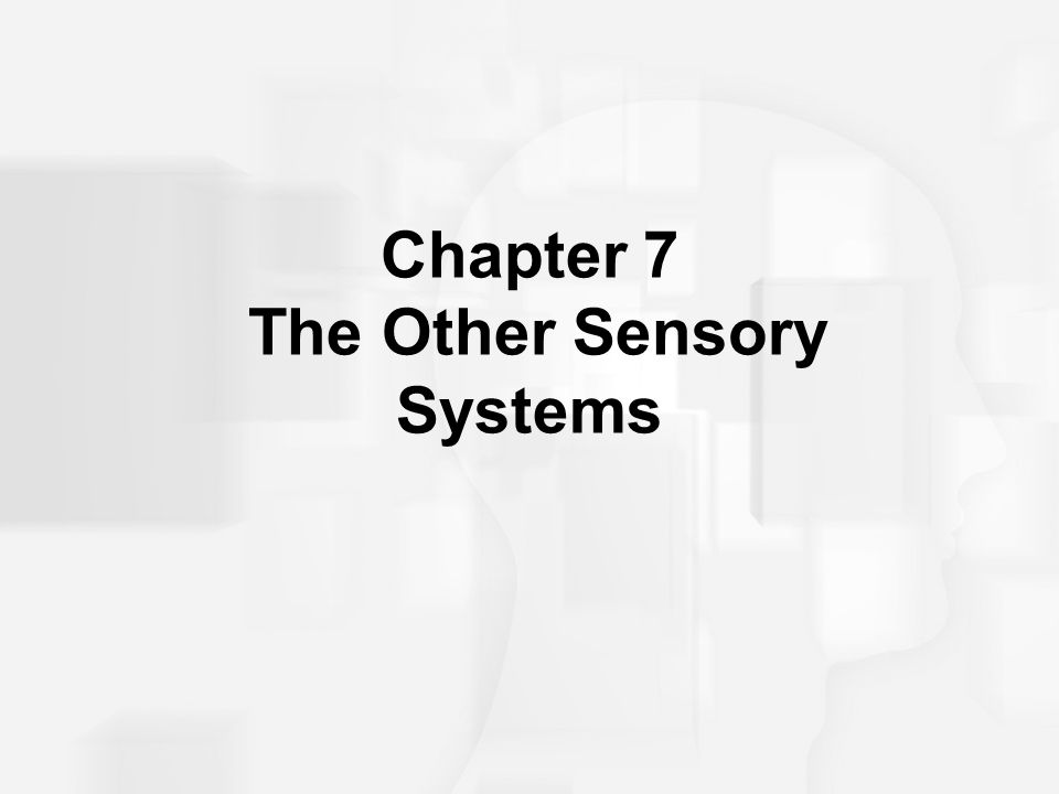 The Mechanical Senses 31 spinal nerves –each has a sensory component and a motor component –connects to a limited area of the body Dermatome: the skin area connected to a single sensory spinal nerve