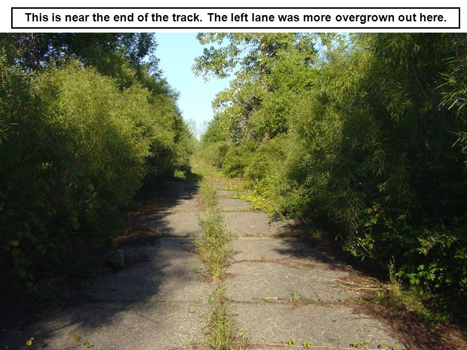 This is near the end of the track. The left lane was more overgrown out here.