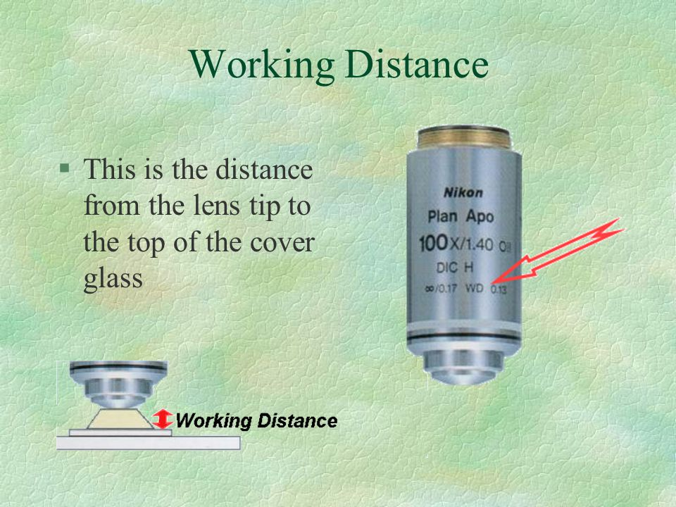 Working Distance §This is the distance from the lens tip to the top of the cover glass